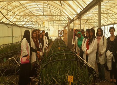 Manipal University Dubai: Field Visit to DATE PALM TISSUE CULTURE LABORATORY, AL AIN
