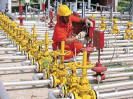 Assam Gas Company, Oil India, GAIL