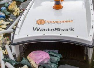 watershark by ranmarine