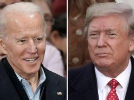 Joe Biden or Donal Trump